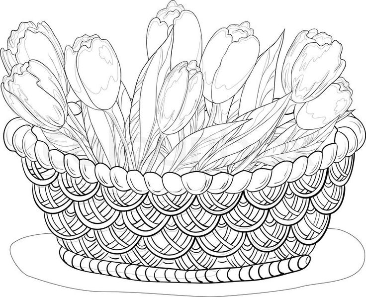 Basket Of Flowers Drawing