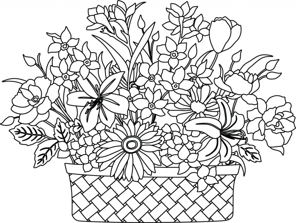 1024x772 Flower Basket Images Drawing Sketch Flowers And Basket Httpsflic