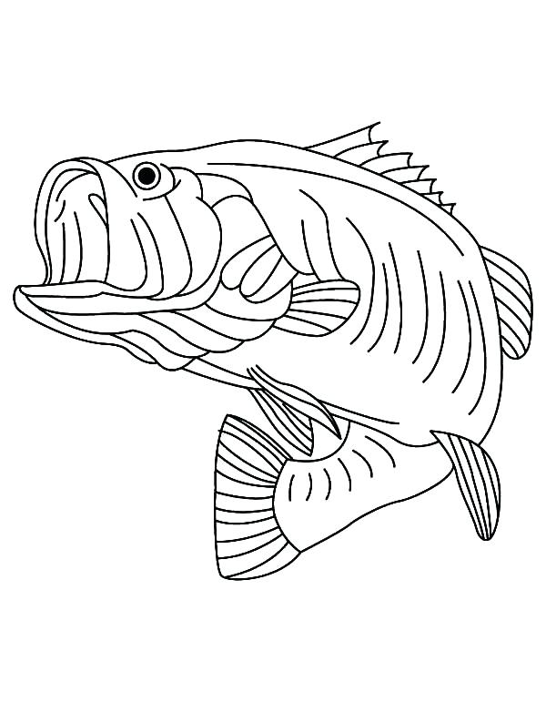 600x771 Bass Coloring Pages Bass Fish Coloring Pages Bass Fish Coloring
