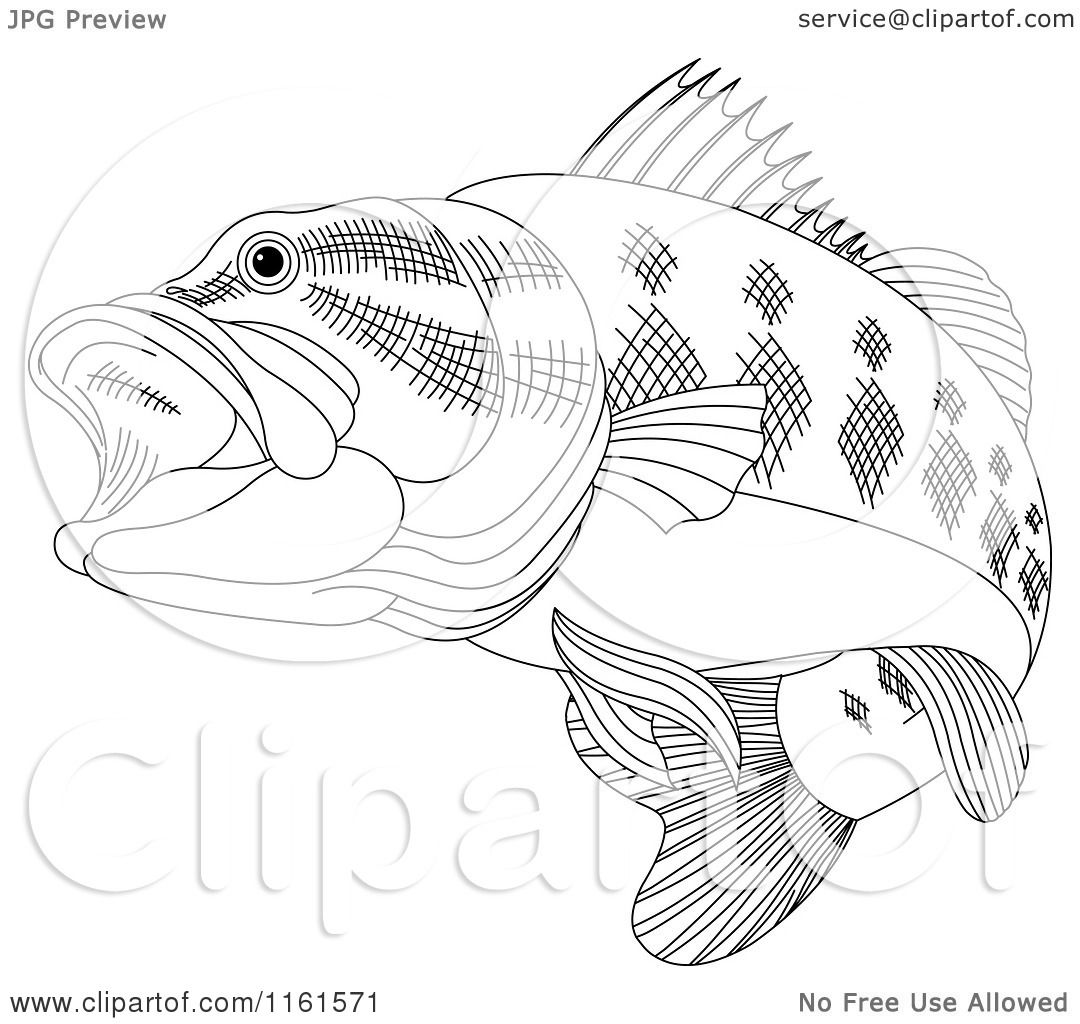 1080x1024 Clipart Of A Black And White Bass Fish