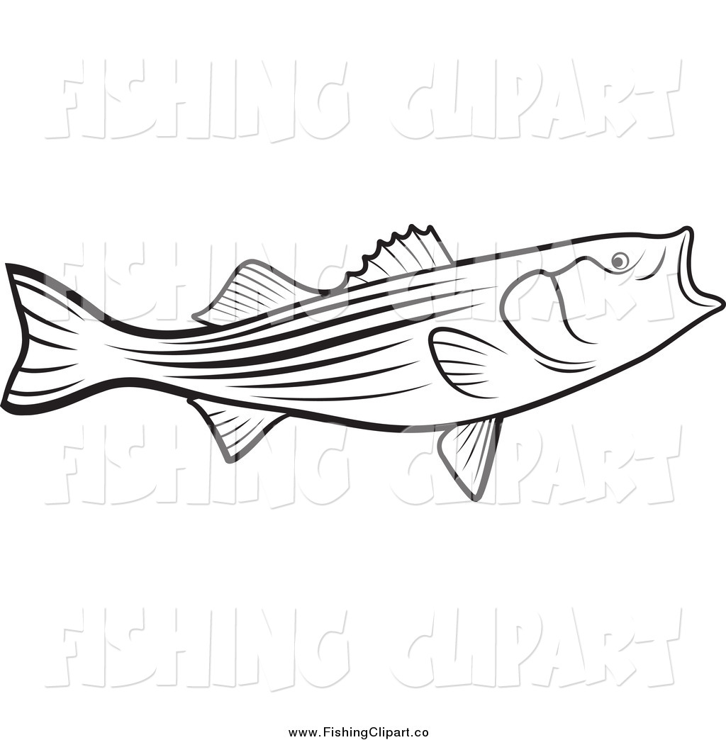 1024x1044 Largemouth Bass Drawing Outline