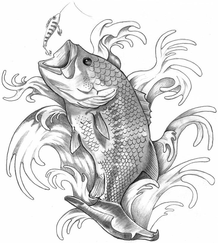 736x819 Bass Fish Tattoo Drawings Drawings