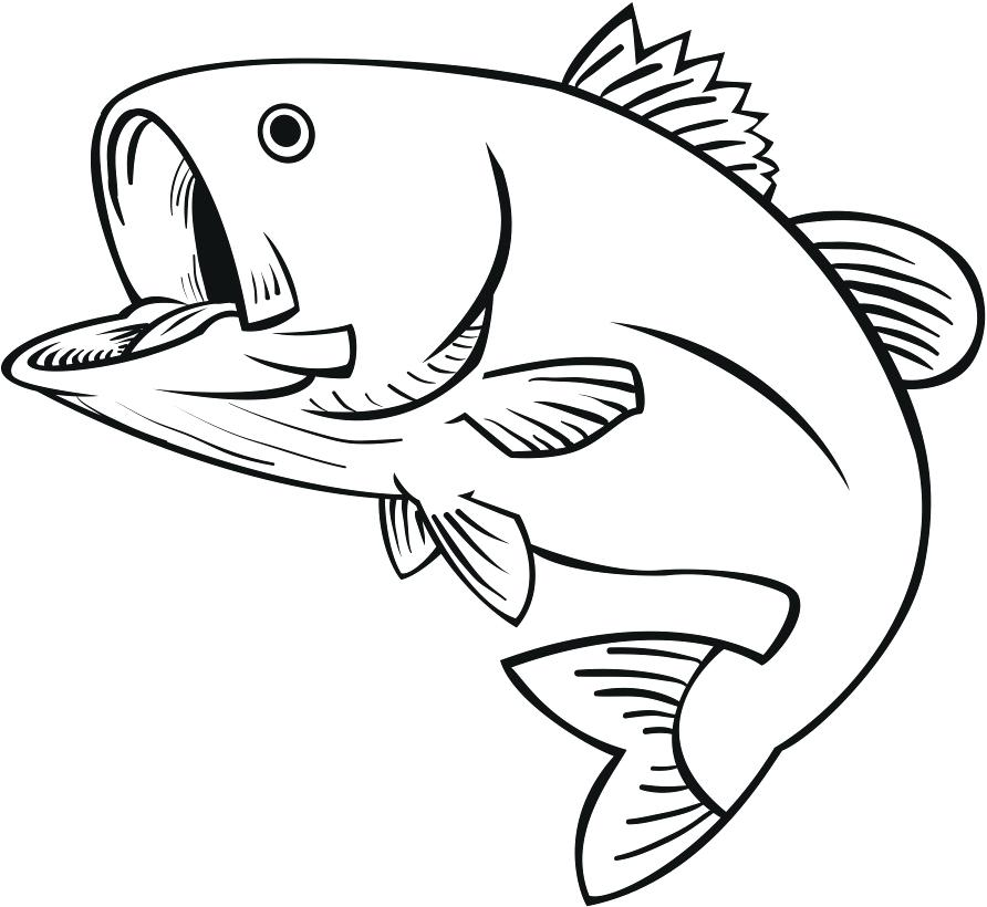 892x820 Fish Clipart Drawn Fish Fish Clipart Outline Memocards.co