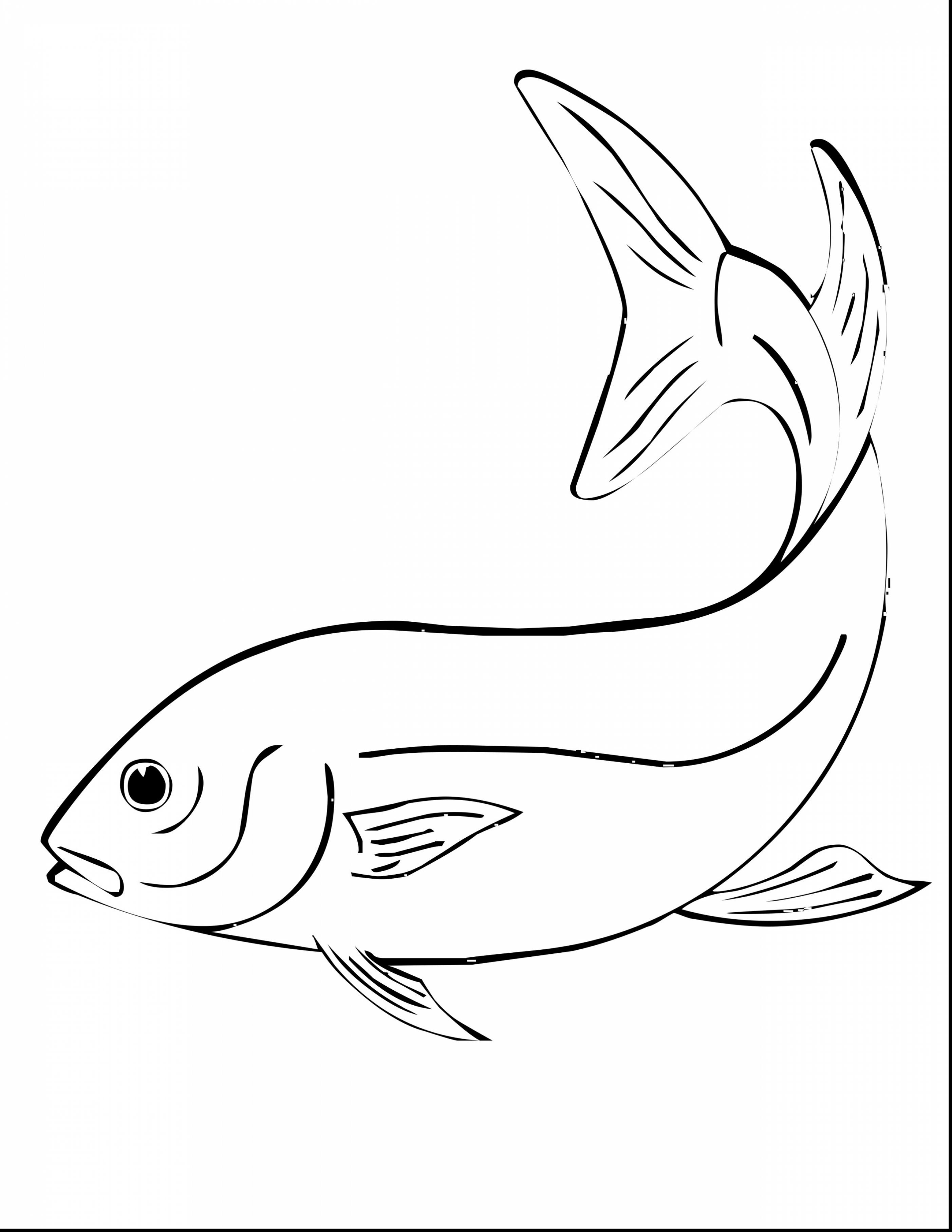 2805x3630 Awesome Bass Fish Coloring Pages Realistic With Fishing Coloring