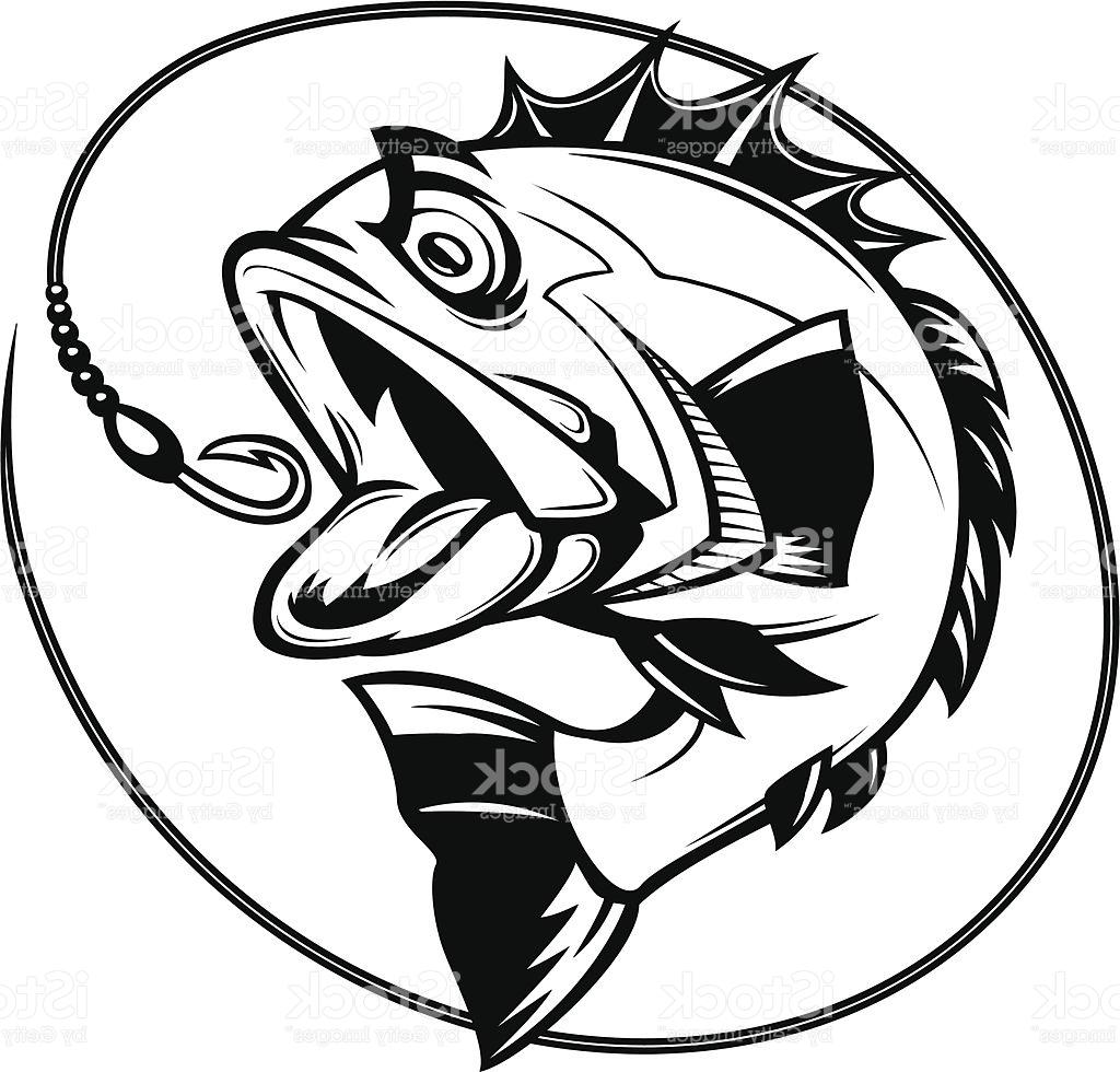 1024x980 Best 15 Bass Fishing Graphic Illustration Drawing