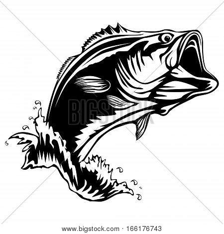 450x470 Bass Images, Illustrations, Vectors