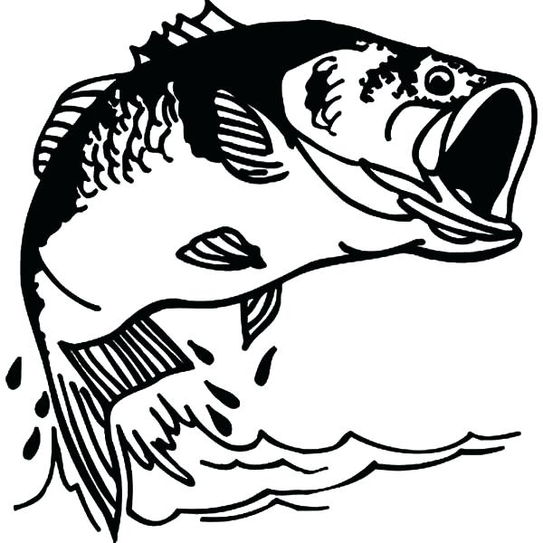 600x600 Fisherman Clipart Bass Fishing Pencil And In Color