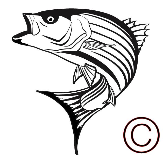 650x650 Free Bass Fishing Clipart Image