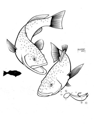 303x400 Related Pictures Bass Fish Drawing Stock Photo A Hand Drawn Pencil