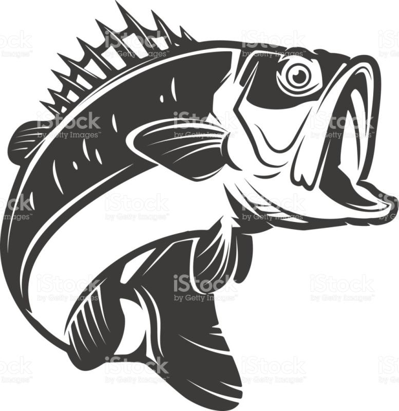 777x800 Bass Fish Clipart Black And White