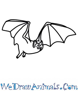 300x350 How To Draw A Vampire Bat