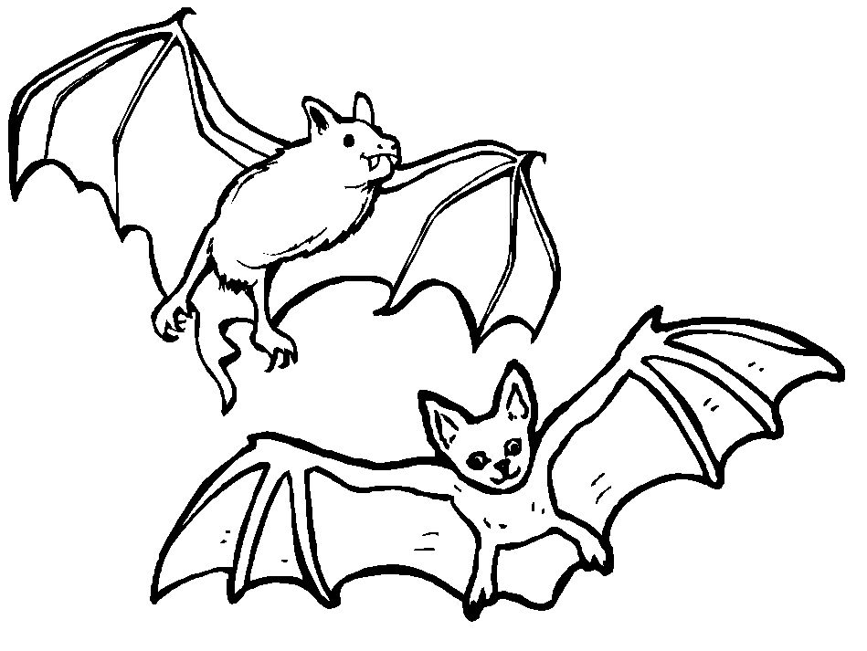 949x713 Brown Bat Coloring Page Wild Kratts Special