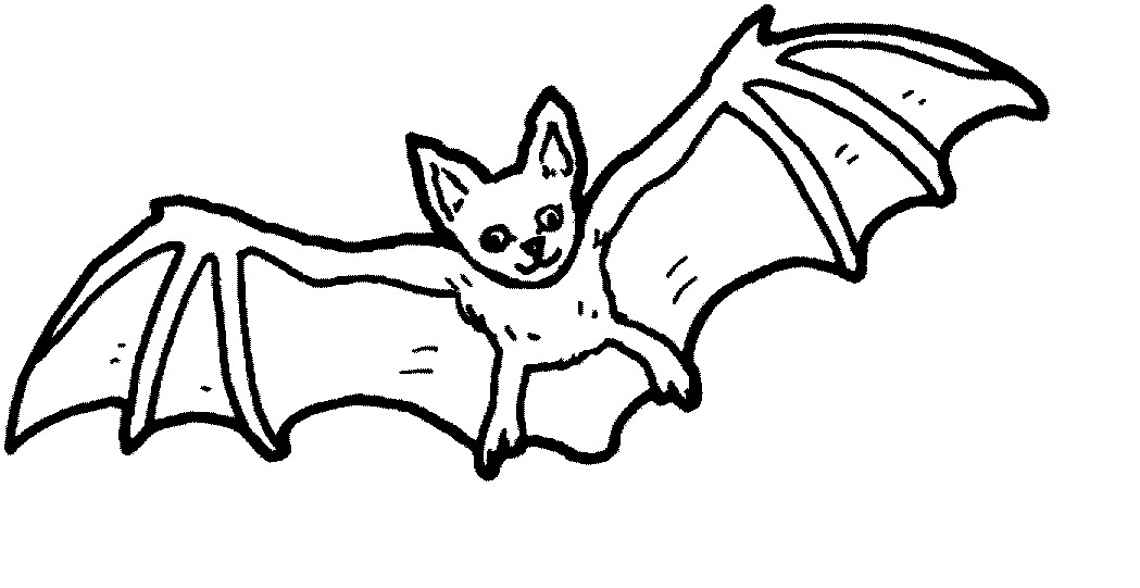 1049x541 Bat Coloring Pages Printable In Good Print Paint Bats Cute How