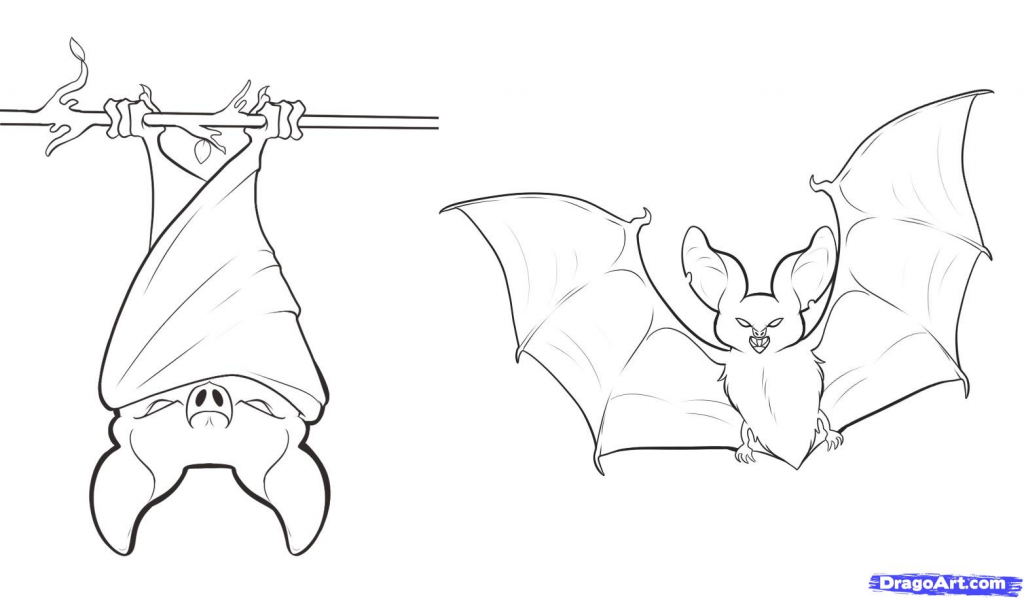 1024x599 How To Draw A Bat For Halloween How To Draw An Anime Bat Step Step
