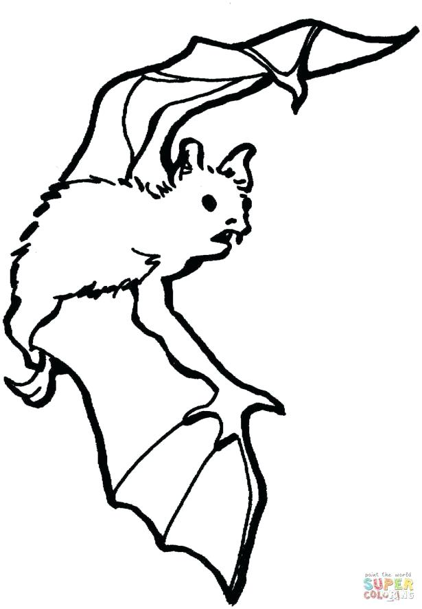 615x886 Coloring Pages Of Bats
