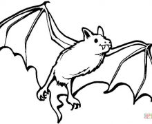 220x180 Bat Coloring Pages Coloring Pages
