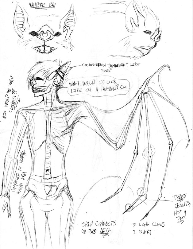 629x811 Bat bat Anthro Study By Tadashichizoko