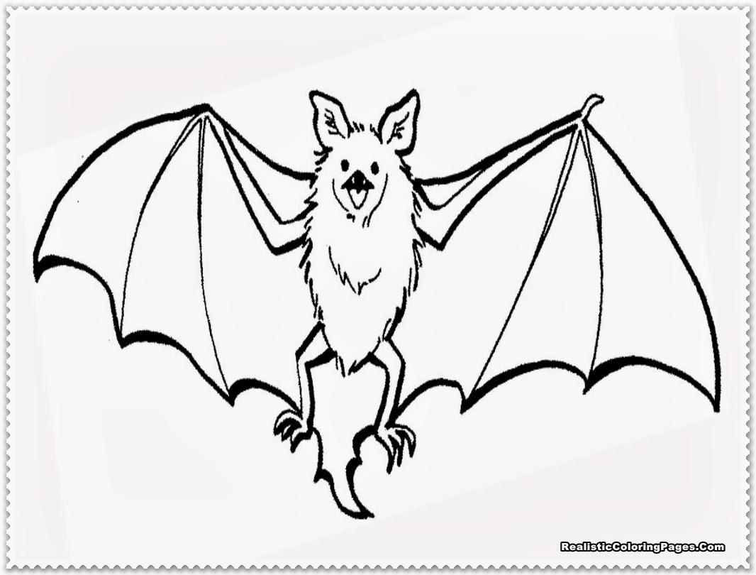 bat wings drawing at getdrawings  free download