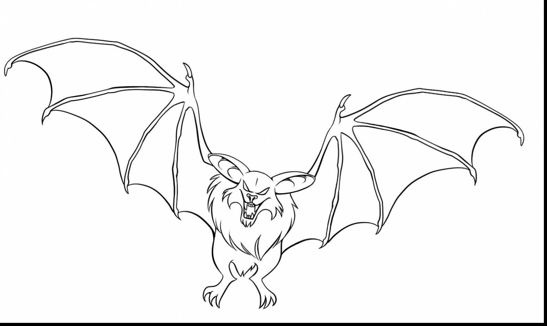 1742x1038 Remarkable How To Draw Bats Drawing With Bat Coloring Page