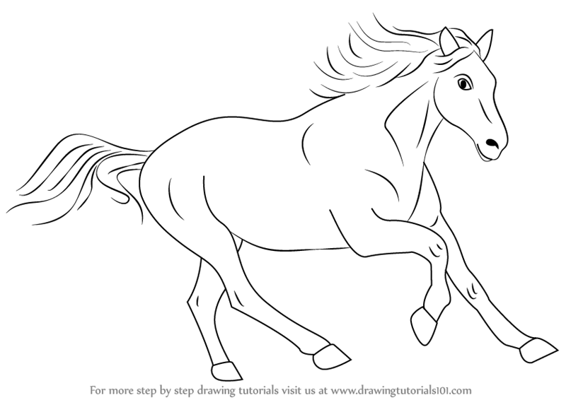 800x566 Learn How To Draw A Cleveland Bay Horse (Farm Animals) Step By