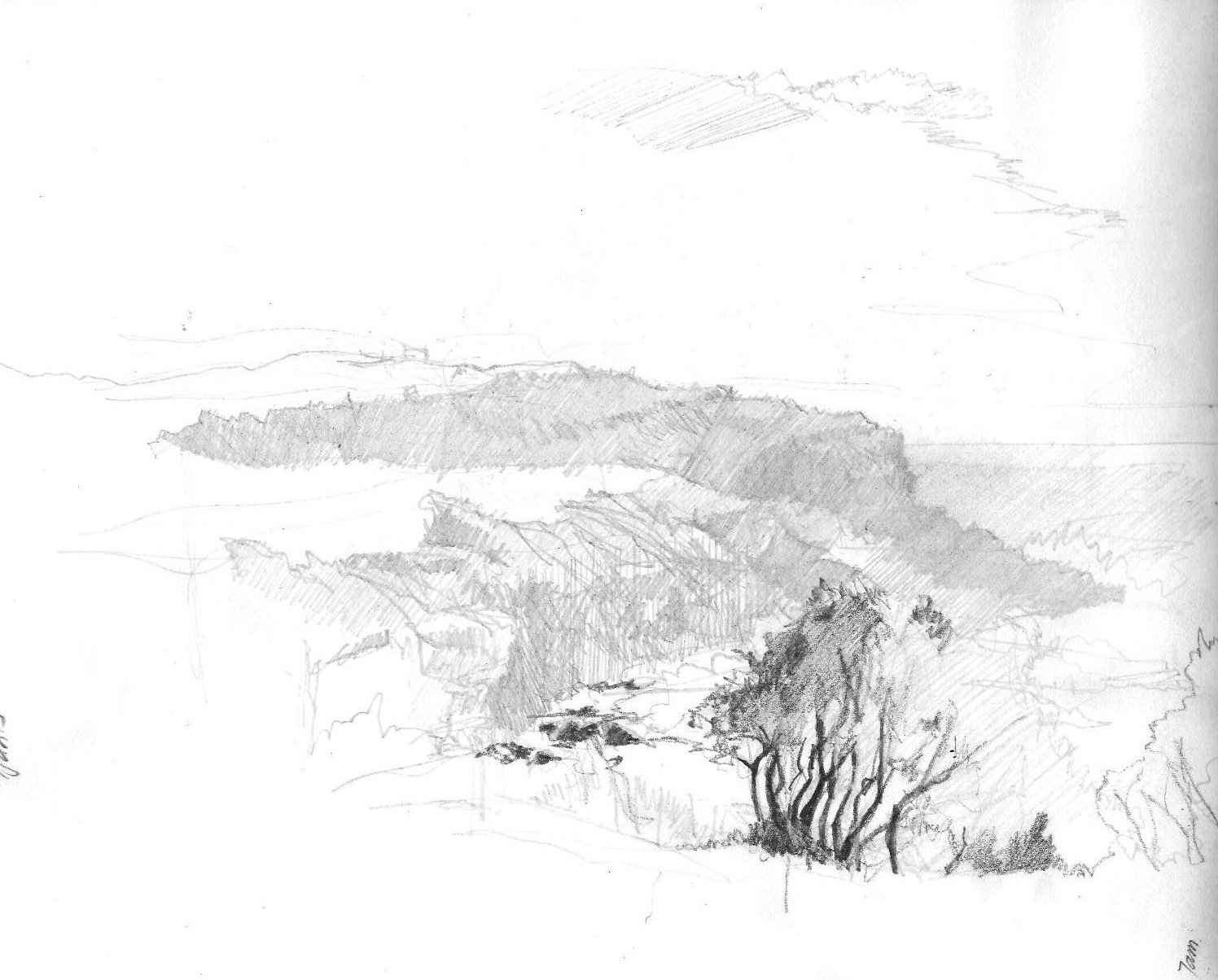 1496x1204 Perspective In Landscape Drawing Little Bay Nsw 2036 Gasp!
