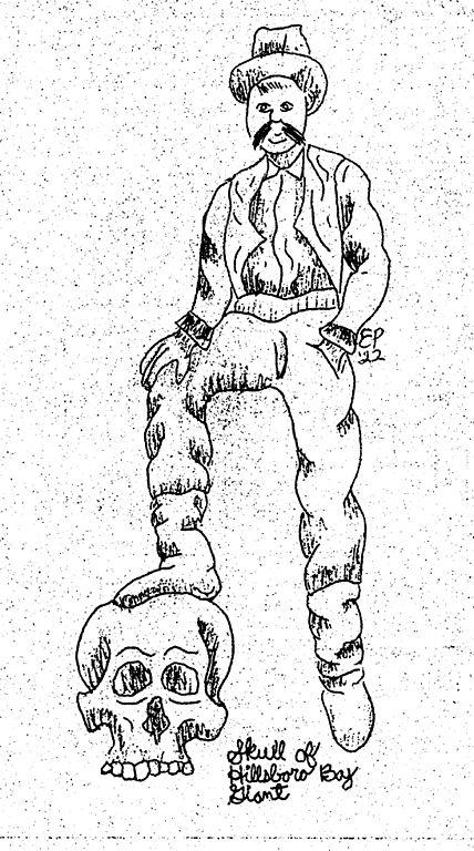 428x768 Filehillsboro Bay Giant Tampa Legend Drawing 1922.jpg
