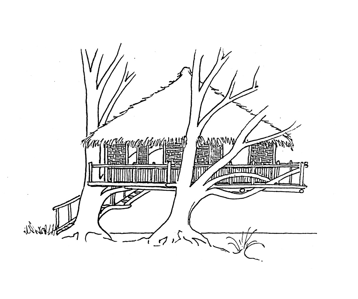 Beach house drawing at free for personal for Beach house drawing