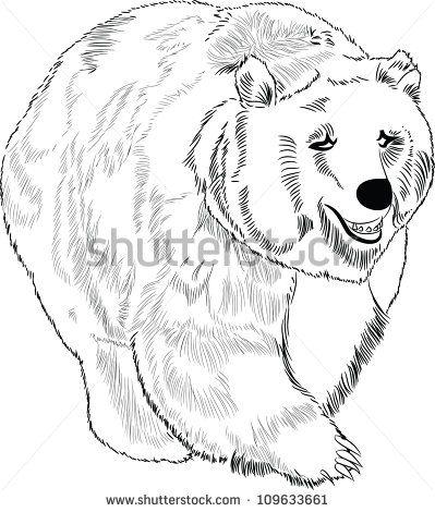 Bear And Cub Drawing