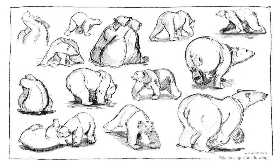 1153x692 Happy Polars My Boys Polar Bear, Bear Sketch