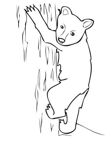 360x480 American Black Bear Cub Coloring Page Free Printable Coloring Pages