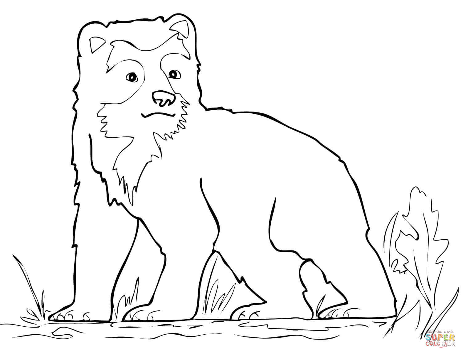 1500x1152 Spectacled Bear Cub Coloring Page Free Printable Coloring Pages