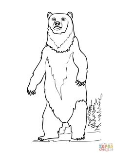 236x314 Standing Bear Cub Silhouette Bea 02 Tk0005 01 Kimball Stock