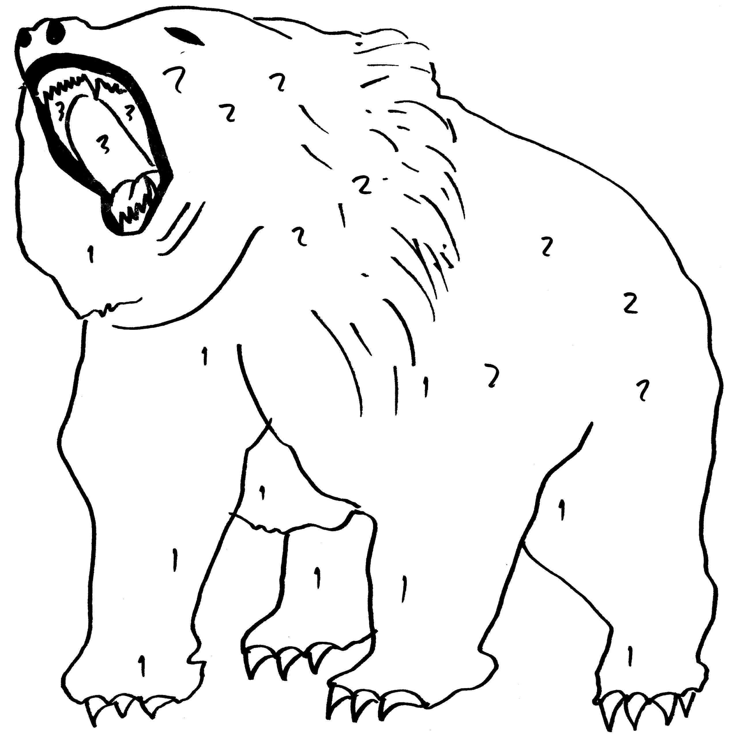 Bear Cave Drawing at GetDrawings