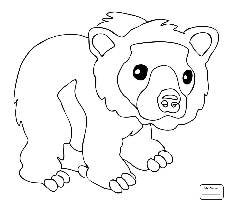 1530x1371 Coloring Pages Mammals Bear Cub Skateborder Cartoon Bears
