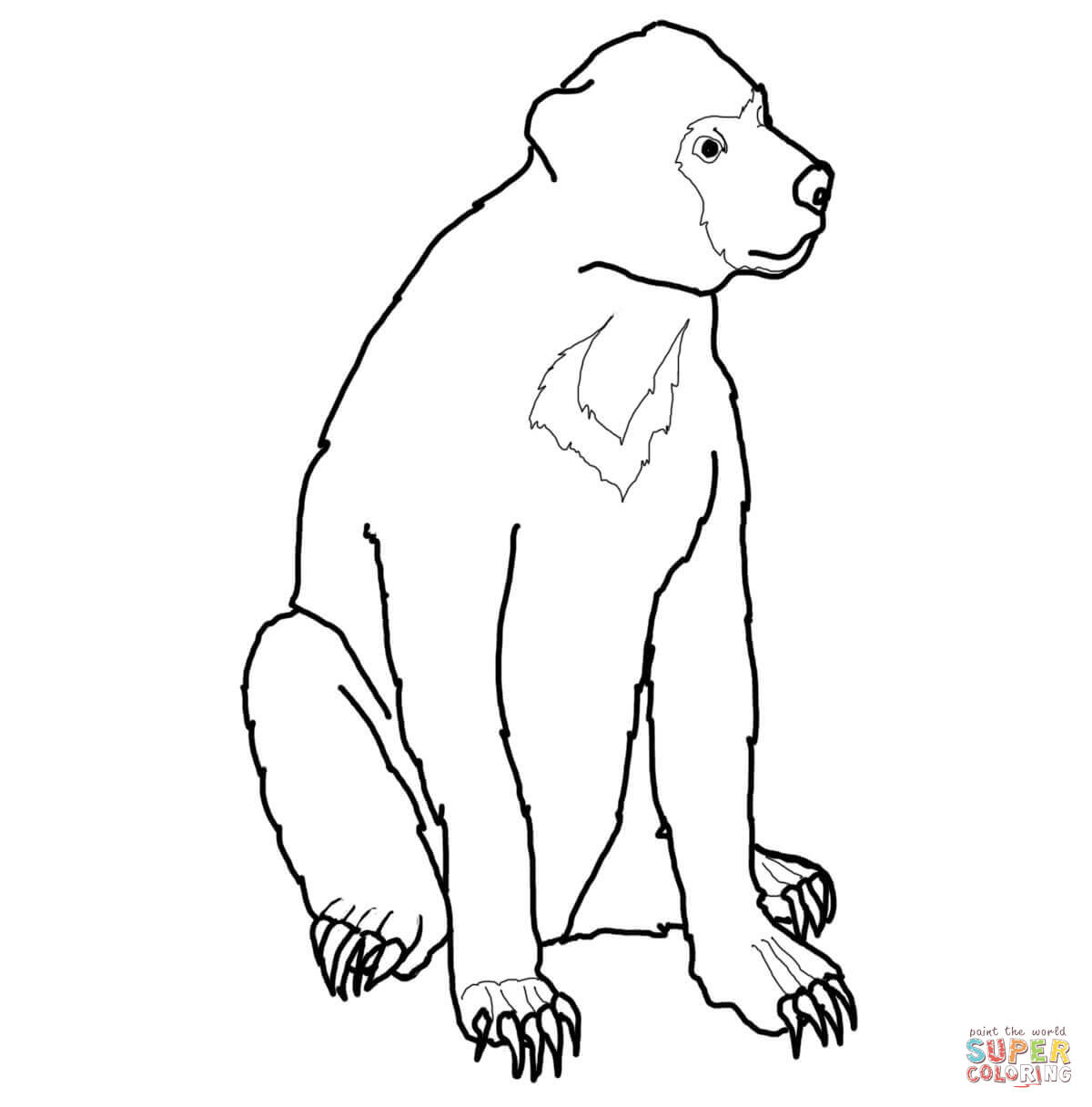 1200x1216 Malayan Sun Bear Coloring Page Free Printable Pages