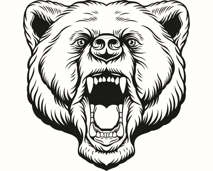 700x561 Grizzly Bear 11 Head Face Animal Growling Mascot Svg Eps