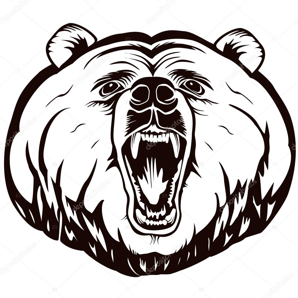 1024x1024 Bear Face Angry Logo White Stock Vector Lioriki