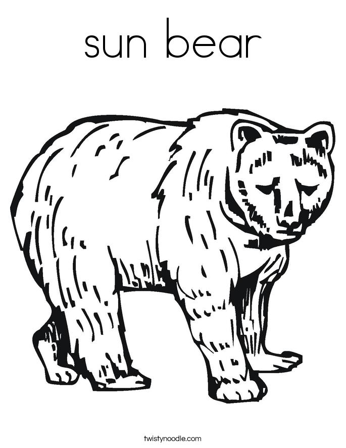 685x886 Sun Bear Clipart Outline