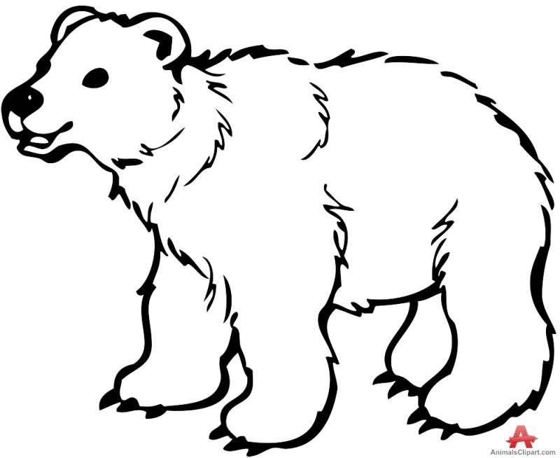 800x654 Bear Outline Clipart
