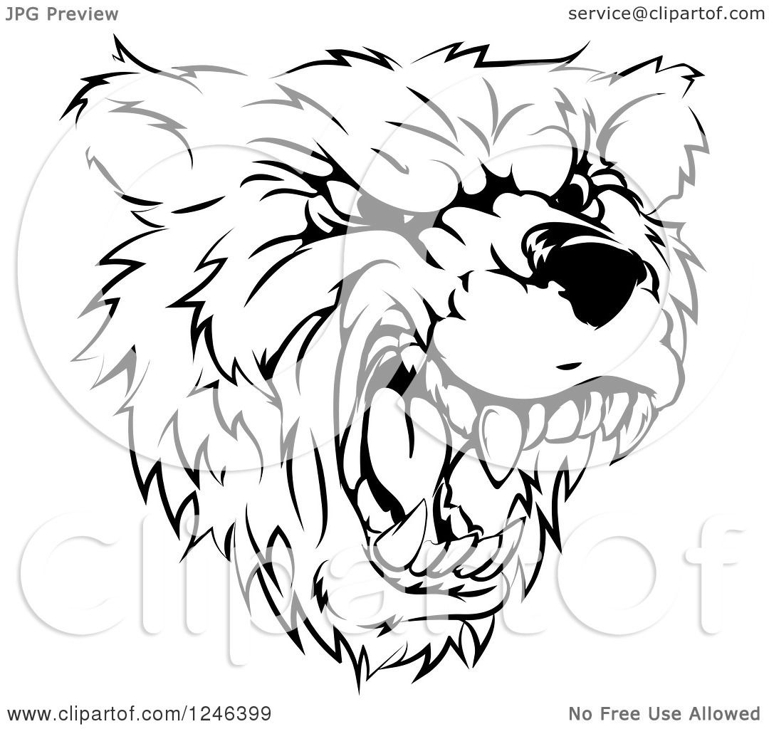 1080x1024 Clipart Of A Black And White Roaring Aggressive Bear Mascot Head