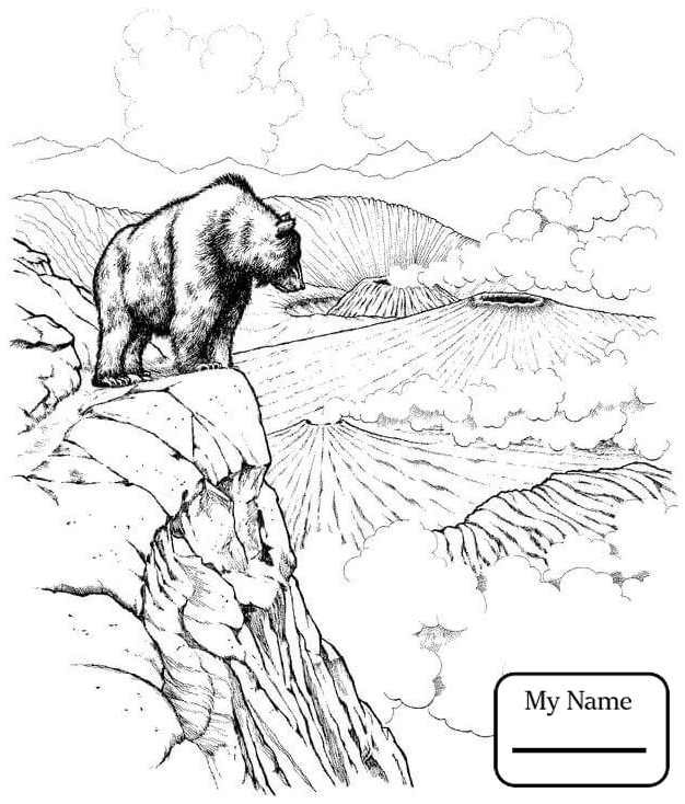 Bear Standing Up Drawing at GetDrawings