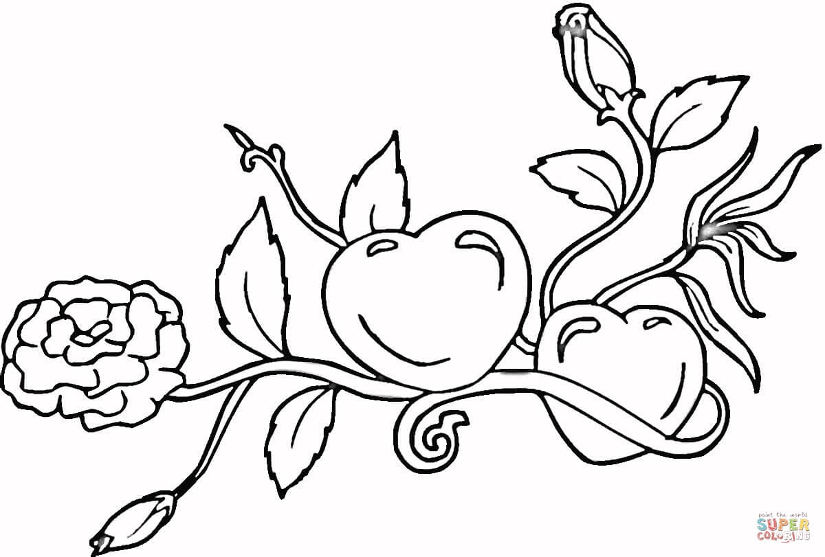 1200x811 Heart With Roses Coloring Pages