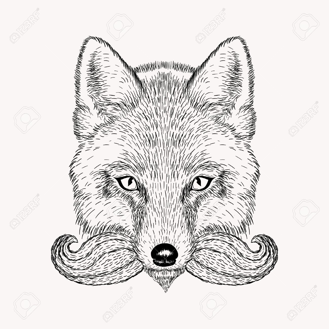 1300x1300 Sketch Fox With A Beard And Moustache. Hand Drawn Vector