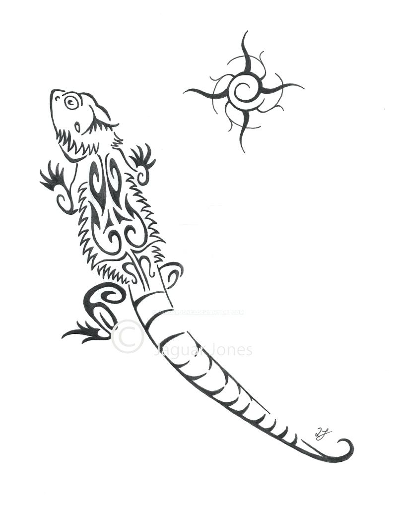 800x1024 Coloring Bearded Dragon Coloring Pages Animal Printable. Bearded