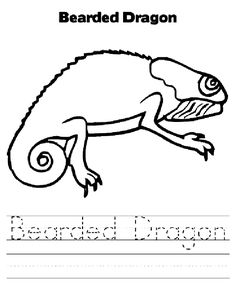 236x304 Bearded Dragon Animal Colouring Pages Bearded