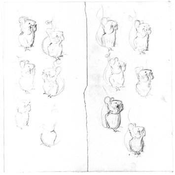 355x355 Sketches