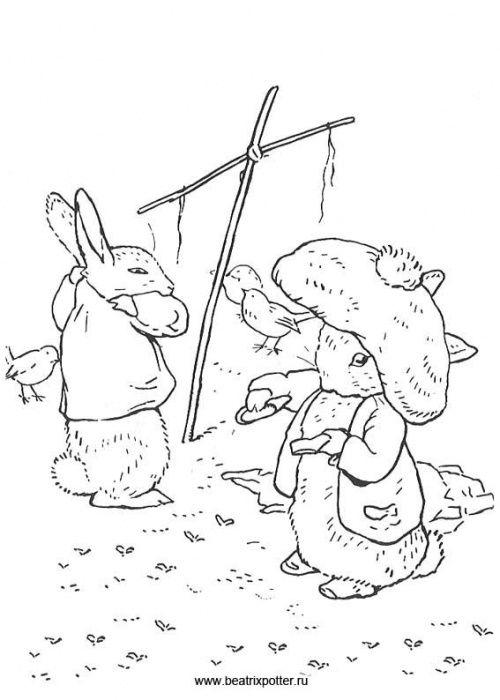 500x700 49 Best Beatrix Potter Images On Peter Rabbit