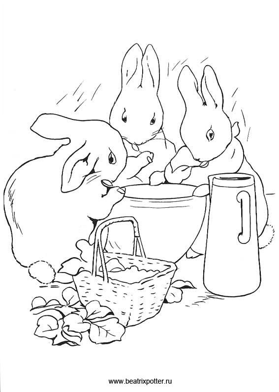 567x794 A Beatrix Potter Baby Shower If I Ever Poop Out A Baby