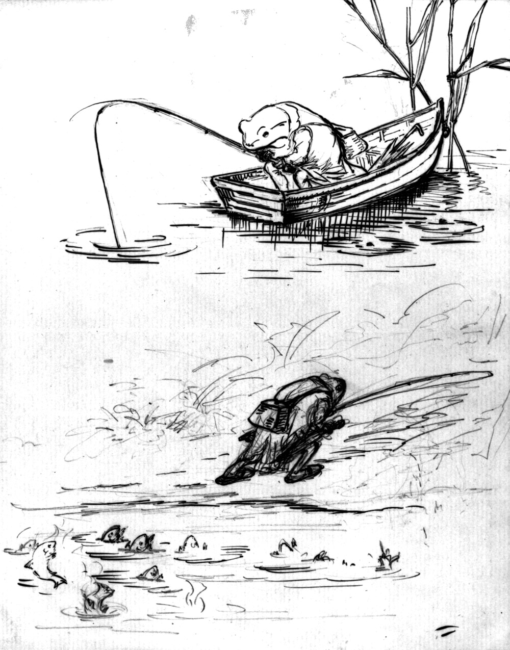 1000x1275 Beatrix Potter, Frog Sketches