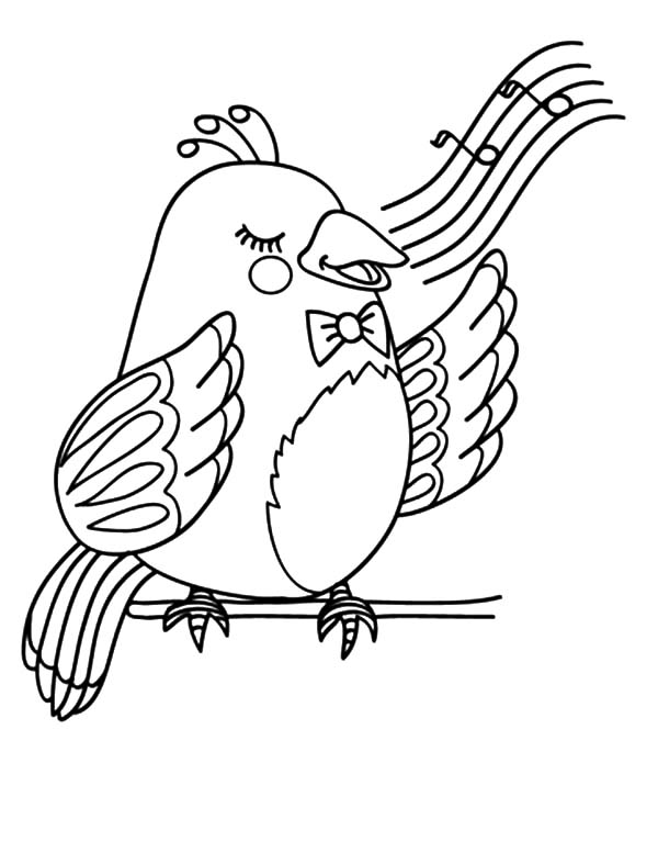 600x777 Canary Bird Beautiful Voice Coloring Pages Best Place To Color